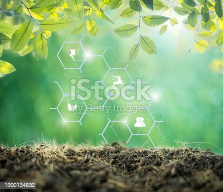 499093370 istock photo blurred ground and green nature background.  environment concept.Ecology concept.green energy concept energy sources sustainable Ecology Elements 1200134632