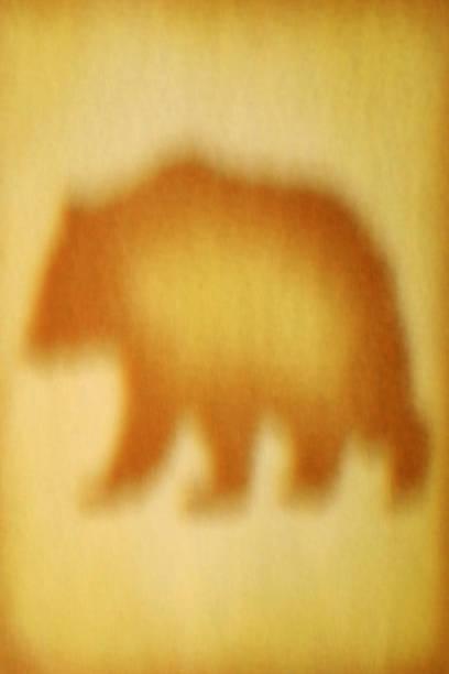 Image floue d'un ours. - Photo