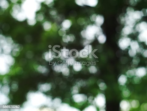 639809128istockphoto blurred image of a tree 586920262