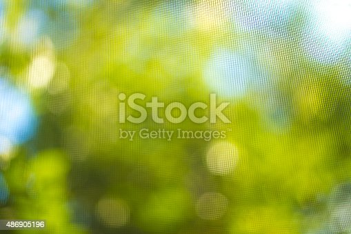 513690180 istock photo Blurred leaves on the tree 486905196