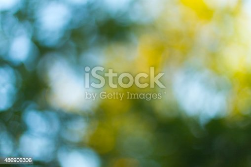 513690180 istock photo Blurred leaves on the tree 486906306