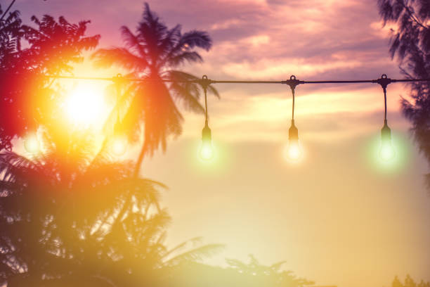 blurred light with coconut palm tree background on sunset, yellow string lights decor in outdoor restaurant stock photo