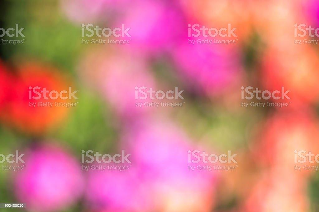 renkli arka plan soyut bokeh bulanık çok renkli - Royalty-free Arka planlar Stok görsel