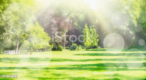 istock Blurred nature park background with sun rays and bokeh, banner 471914976