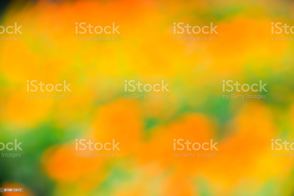 Blurred of abstrack colorful flower photo libre de droits