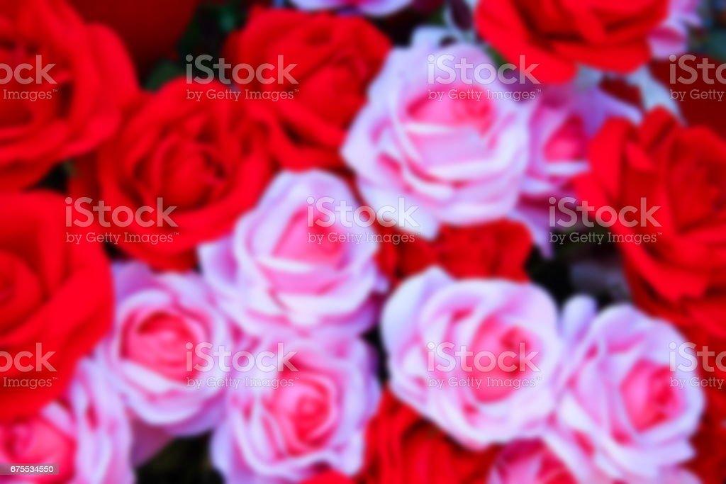 Blurred of rose photo libre de droits