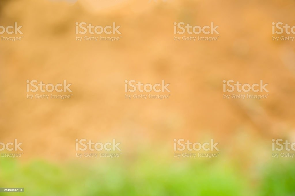Blurred of Soil and grass , Green and Brown royalty-free stock photo