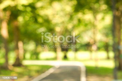 Blurred park with bokeh light background, nature at garden with green tree at summer.