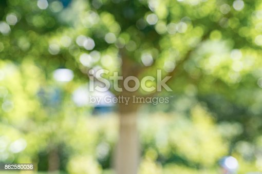 istock Blurred photo of an apple tree in the garden 862580036