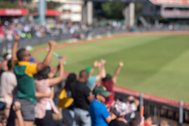 Blurred photo of fans cheering during cricket match Blurred photo of fans cheering during cricket match sport of cricket stock pictures, royalty-free photos & images