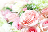 istock blurred rose pink soft bouquet for background, roses flower blurry pink color pastel, rose sweet color blur 1154620105
