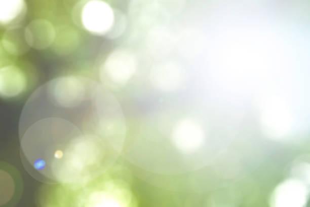 輝く自然とぼやけた空の背景太陽光フレアとボケ味 - 木漏れ日 ストックフォトと画像