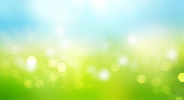 Blurred sky grass horizontal background. - foto stock