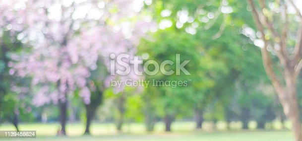 639809128istockphoto Blurred spring and summer nature background, Blur greenry park outdoor background 1139486624