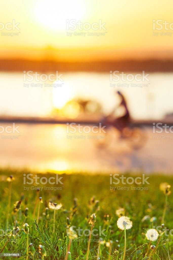 Нечеткое изображение Байкер с акцентом на зеленом поле стоковое фото