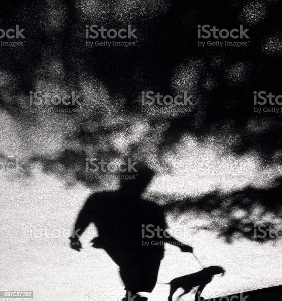 Photo of Blurry shadow of a person and a dog