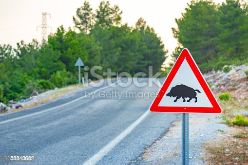 istock Boar crossing sign with copy space on a beautiful mountain road background. 1158843682