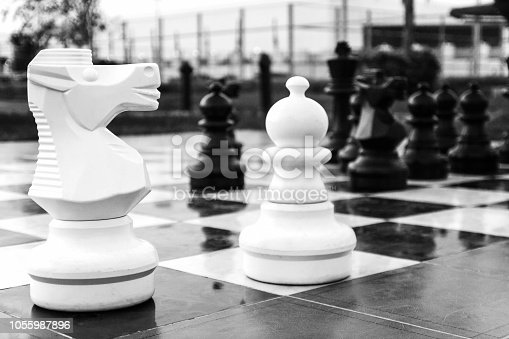 istock Board with large outdoor chess. The figure of the horse.Games in the fresh air. 1055987896