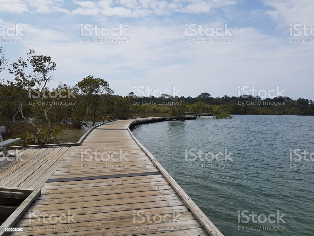 Boardwalk along Currumbin Creek royalty-free stock photo