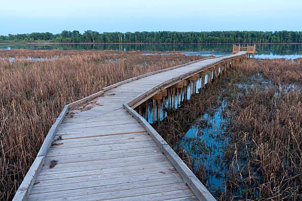 Boardwalk and Marsh in Minnesota River Wildlife Refuge stock photo