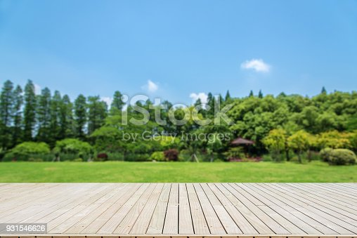 istock Boardwalk And Spring Green Field Abstract Background 931546626