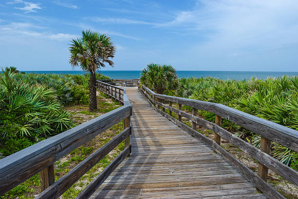 boardwalk at canaveral national seashore - orlando florida photos stock photos and pictures