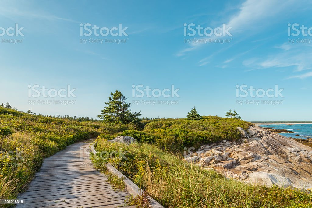 Boardwalk at Keji Seaside trail stock photo