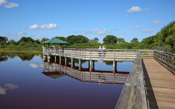 Boardwalk at the Wakodahatchee Wetlands stock photo