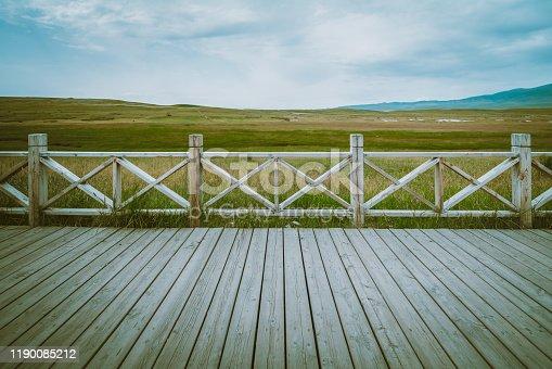 Boardwalk in grassland