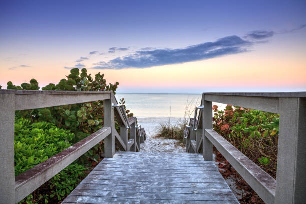 Boardwalk leading down to the white sands Boardwalk leading down to the white sands along the North Gulf Shore Beach at sunrise in Naples, Florida naples florida stock pictures, royalty-free photos & images
