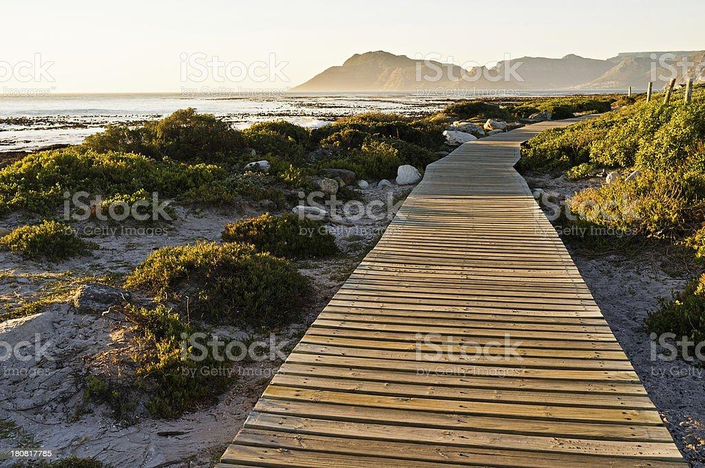 Boardwalk leading through dunes to the ocean stock photo