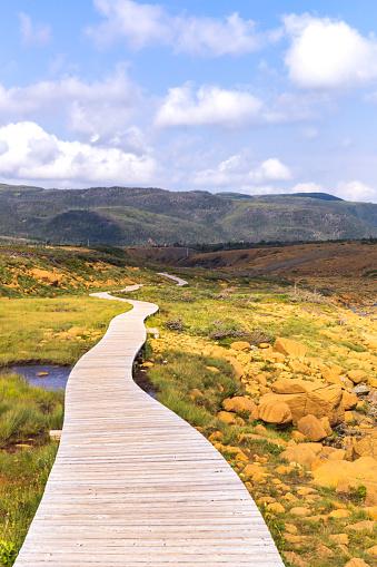 Boardwalk on Tablelands Trail, Gros Morne National Park, Newfoundland and Labrador, Canada
