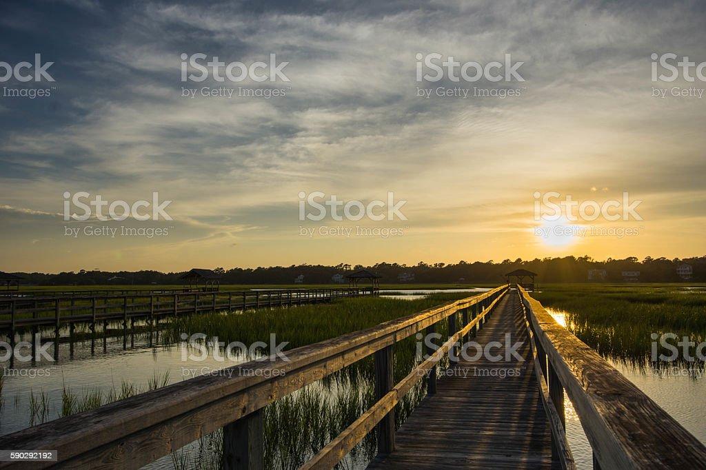boardwalk on the marsh Стоковые фото Стоковая фотография