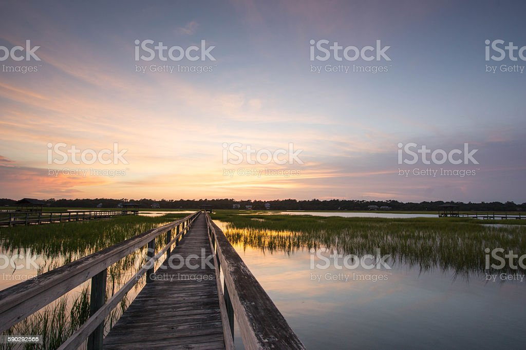 boardwalk on the marsh royaltyfri bildbanksbilder