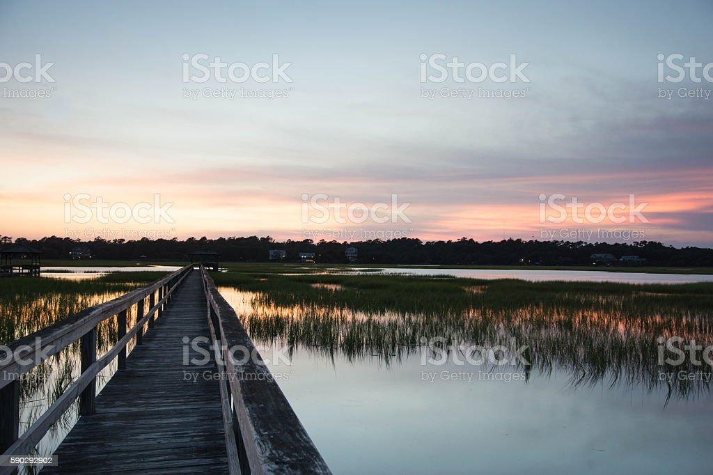 boardwalk on the marsh royaltyfri bildbanksbilder