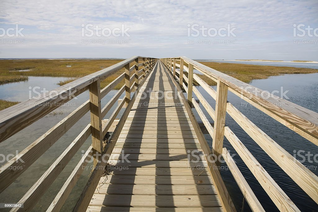 Boardwalk über swamp Lizenzfreies stock-foto