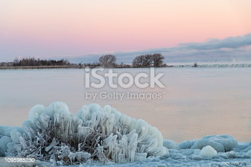 A view of a marsh boardwalk during a winter deep freeze at sunrise with ice covered shrubs along the shoreline of Lake Huron (Georgian Bay) in Collingwood.