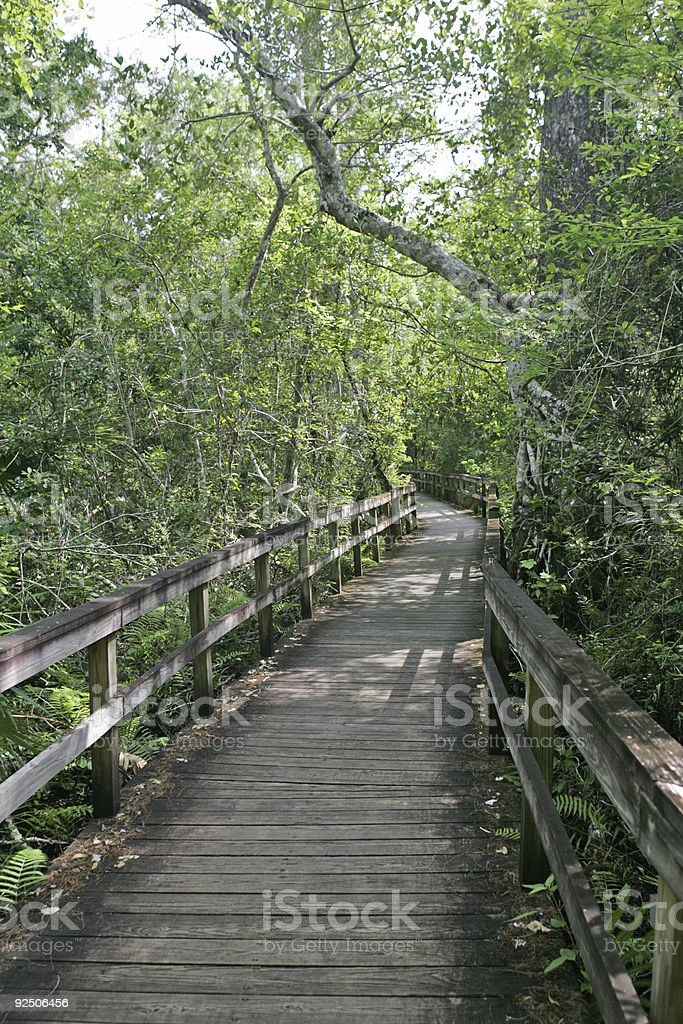 Boardwalk royalty-free stock photo