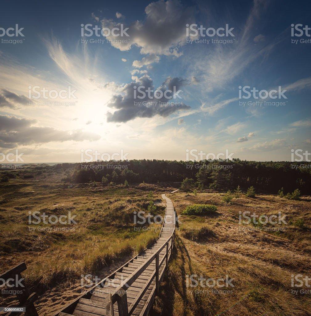 Boardwalk through the dunes stock photo