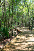 Shingle Creek in Kissimmee, Florida is recognized as one of the Headwaters of the Everglades in Florida. Shingle Creek Park & Preserve protects these wonderful woods along the Shingle Creek and provides the amenities desired by older walkers and ecotourists alike.