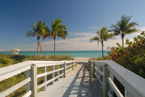 Boardwalk to Beach in Florida