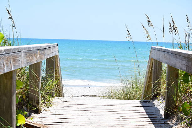 Boardwalk to the Ocean A wooden, sandy boardwalk leading to the blue Atlantic Ocean. Vegetation lines both sides of the wooden railings.  boardwalk stock pictures, royalty-free photos & images