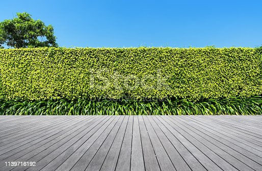 601026242istockphoto Boardwalk with green hedge background 1139716192