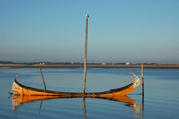 barco e gaivota - aveiro imagens e fotografias de stock