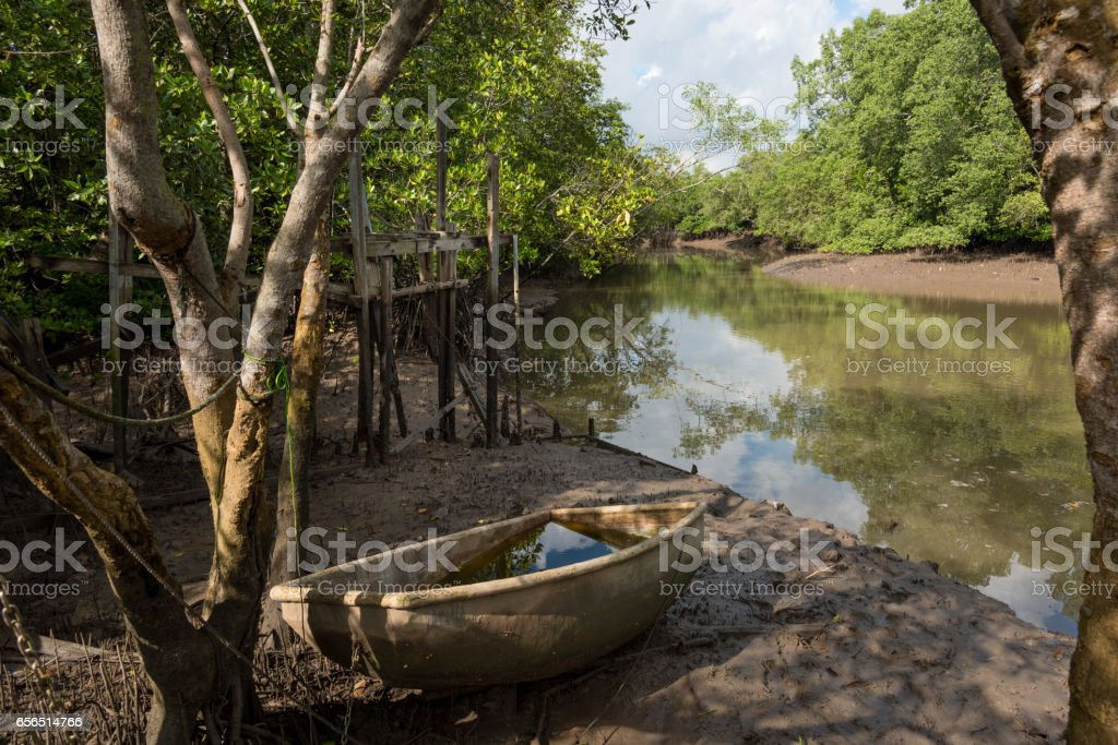 Boat at low tide in the mangroves stock photo