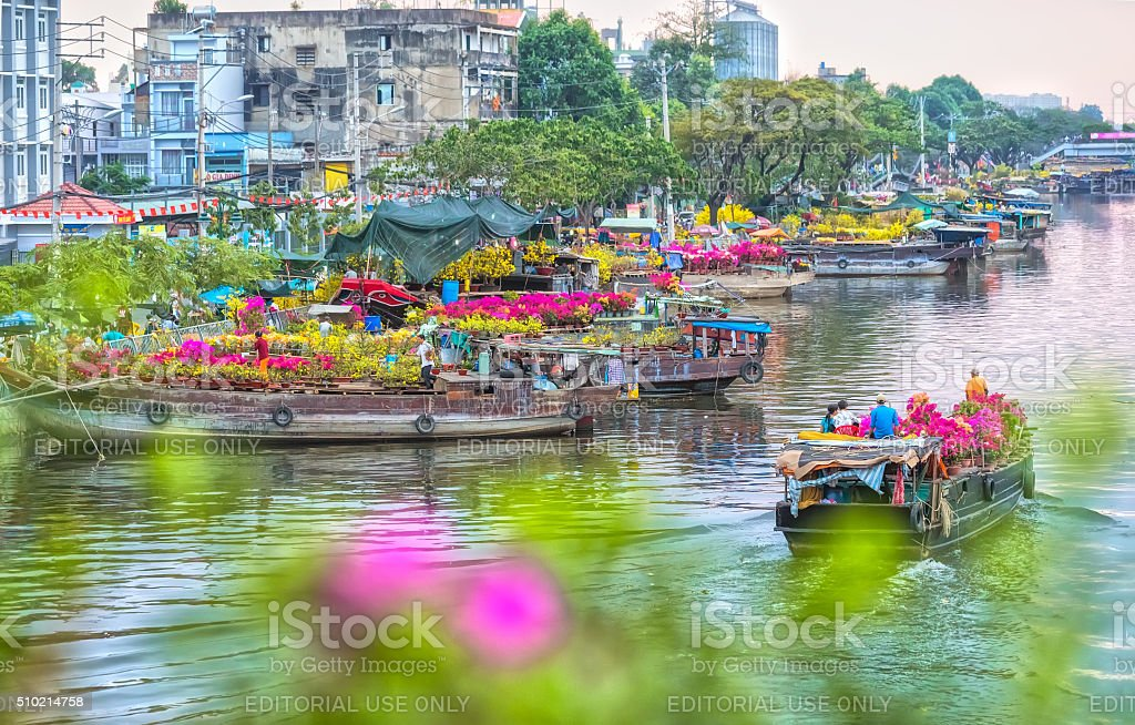 Boat dock flowers looking trafficking royalty-free stock photo