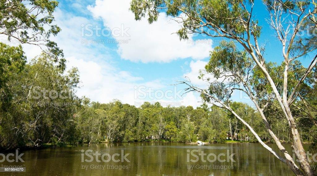 A boat harbor landscape waterscape. stock photo