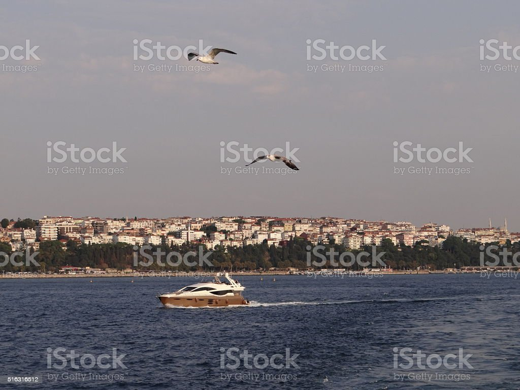 Boat in front of the skyline of Istanbul stock photo