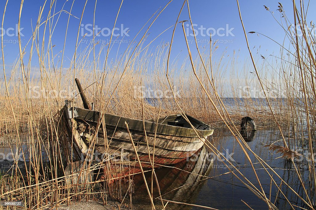 Boat in reed stock photo