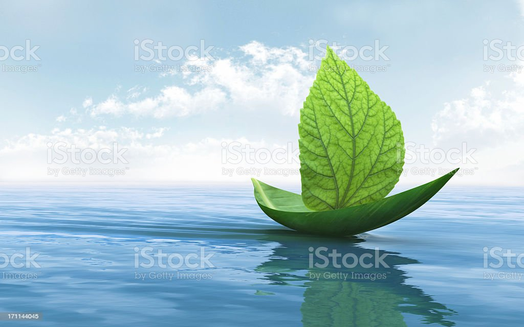 A boat leaf as a symbol of nature stock photo